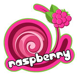 Ice cream raspberry royalty free illustration