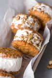Ice cream sandwiches. With nuts and wholegrain cookies. Homemade vanilla and walnuts   close up royalty free stock images