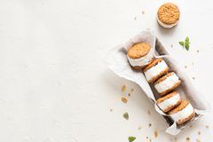 Ice cream sandwiches. With nuts and wholegrain cookies. Homemade vanilla  on white background stock image