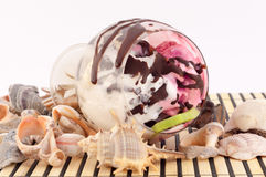 Ice cream with Seashells Royalty Free Stock Images