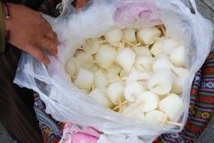 Ice cream. The Tibetan people's own processing of ice cream Stock Image