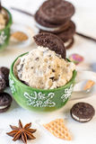 Ice cream time. Ice cream with cookies flavor in the cup,selective focus Royalty Free Stock Photos