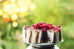 Ice cream tiramisu cake with cranberries Stock Image