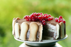Ice cream tiramisu cake Stock Photo