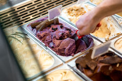 Ice cream trays Royalty Free Stock Photos