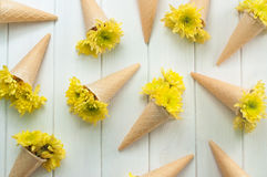 Ice cream waffle cones with flowers Stock Photography