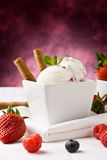Ice Cream With Berries Stock Images