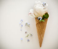 Ice creams immitation in waffle cone decorated mint leaves and flowers. Peonies flower in waffle cone with mint leaves. Stock Photos
