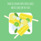 Ice creams popsicles with mint leaves, citrus slices and ice cubes. Illustration of ice creams popsicles with mint leaves, citrus slices and ice cubes Stock Image