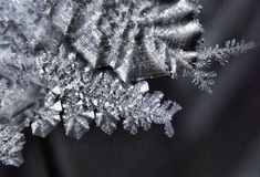 Ice crystal Royalty Free Stock Image