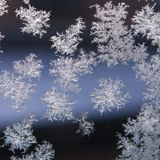 Ice crystal on dark glass window Royalty Free Stock Image