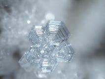Ice crystal little macro Stock Photography