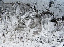 ICE CRYSTALS. Ice patterns on frosty window Royalty Free Stock Photo