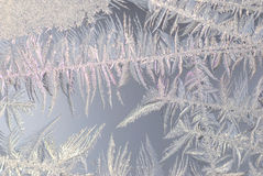 Ice crystals. Close up shot of ice crystals on a window royalty free stock photos