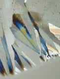 Ice crystals Stock Photo
