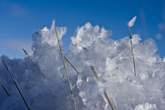 Ice crystals. Macro view of ice crystals with blue sky background Stock Image