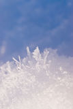 Ice crystals Stock Photography