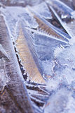 Ice crystals abstract Royalty Free Stock Photos