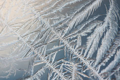 Ice crystals closeup Stock Images