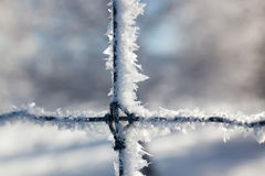 Ice Crystals on a Fence Royalty Free Stock Photos