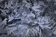 Ice crystals on frozen lake Stock Image