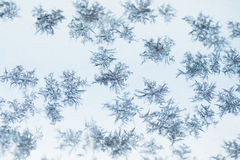 Ice crystals on glass Stock Image
