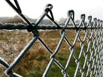 Ice crystals on a green wire mesh fence Royalty Free Stock Photography