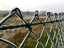 Ice crystals on a green wire mesh fence Royalty Free Stock Photo