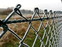 Ice crystals on a green wire mesh fence Royalty Free Stock Image