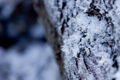 Ice crystals growing on a wood surface. Stock Photography