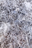 Ice crystals under frozen puddle Stock Photography