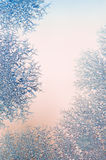Ice crystals on a window Royalty Free Stock Image