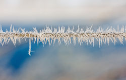 Ice crystals on a wire Stock Images