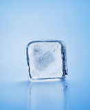 Ice cube. Closeup on blue Stock Photo