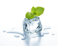Ice cube. With mint leaves on it Stock Photo