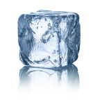 Ice cube. In front of white background Royalty Free Stock Image