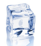Ice cube. An ice cube on a white background Royalty Free Stock Images