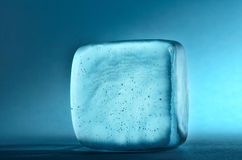 Ice cube. On cold blue background stock photos