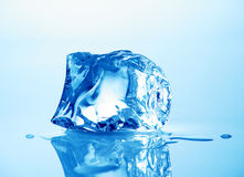 Ice cube. Melting ice cube with blue toning in background Stock Photos