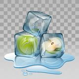 Ice cube with apple. Illustration Stock Image