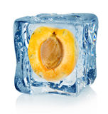 Ice cube and apricot Royalty Free Stock Photos