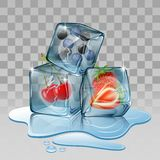 Ice cube with berry fruits. Stock Photography