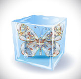 Ice cube with butterfly. Royalty Free Stock Photo