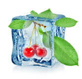 Ice cube and cherry Royalty Free Stock Images