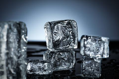 Ice cube composition Stock Photography