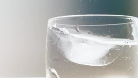 Ice cube fall into cup of water stock video