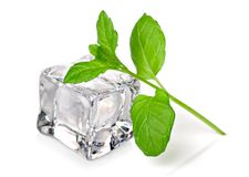 Ice cube with fresh mint. Single ice cube with fresh mint on white background Stock Image