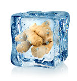 Ice cube and ginger Royalty Free Stock Photography