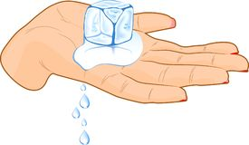 Ice cube in a hand. Female hand with ice cube. Vector illustration Royalty Free Stock Images