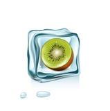 Ice cube with kiwi fruit inside  on white Royalty Free Stock Image